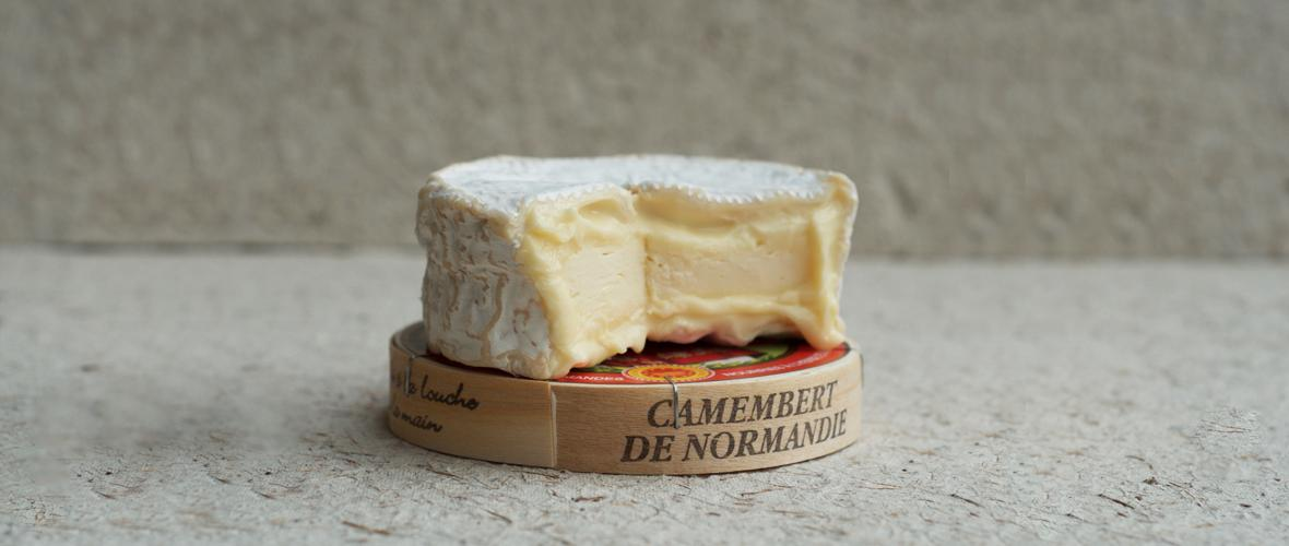 camembert_de_normandie_aoc_3 The Major Cheese Styles & How They Are Made